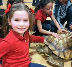Tortoise at St. Joseph Catholic School Wenatchee